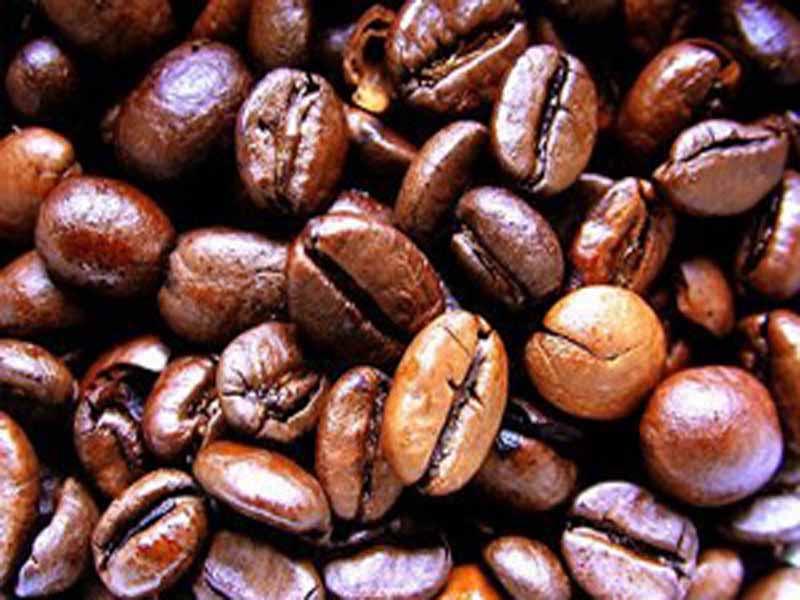 Nespresso krups cialde compatibili